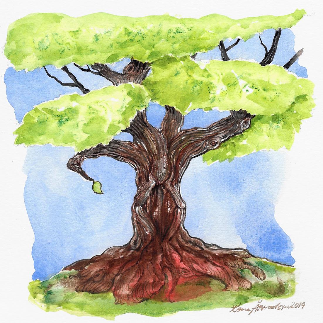 thinking_tree
